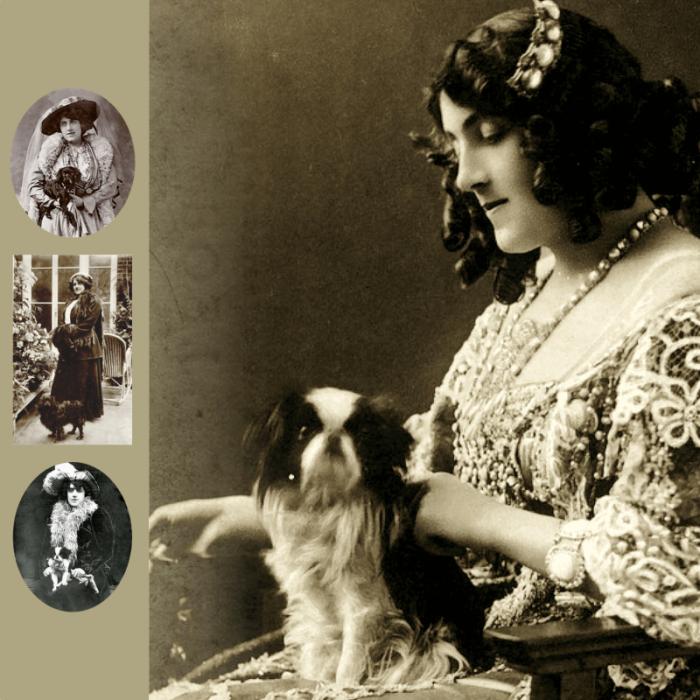 Julia Neilson Old Drury y Mousme | Mousme y Old Drury | Perrillos del halda ilustrados
