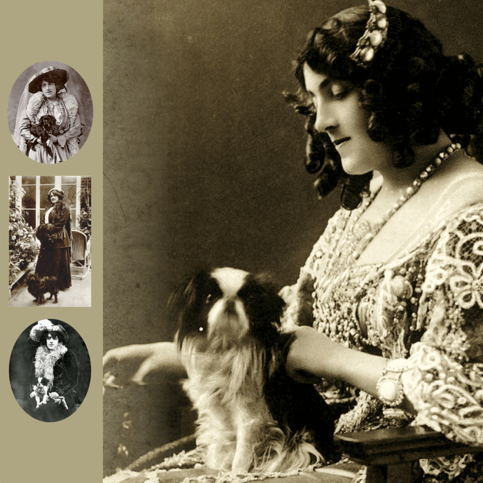 Julia Neilson Old Drury y Mousme   Mousme y Old Drury   Perrillos del halda ilustrados